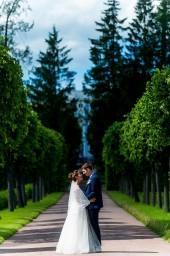 Свадебные фотографии - Фото №628