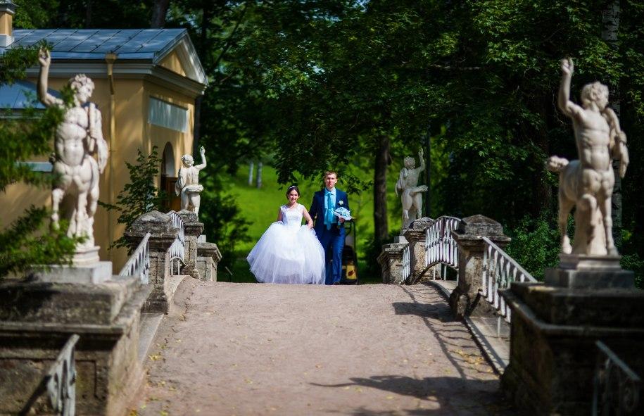 Свадебная фотосессия в Павловске